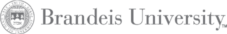 Brandeis-universityGrayscale_Client logos_500x500-21